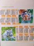 "Календари палатки ""Тигры на природе"""