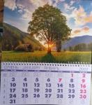 """Календарь квартальный  на пружине """"дерево на закате"""""""