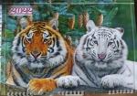 """Календарь  с окошком 1 пружина """"2 тигра с елью"""""""