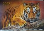 """Календарь  с окошком 1 пружина """"крадущийся тигр"""""""