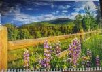 """Календарь  с окошком 1 пружина """"горы и цветы"""""""