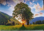 "Календарь  с окошком 1 пружина ""дерево на фоне заката"""